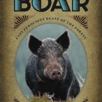 Jeffrey Greene -- The Golden-Bristled Boar: Last Ferocious Beast of the Forest